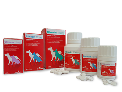 Dechra Veterinary Products NZ, Clinacin